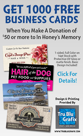 Support us in honeys memory adult cat shelter huntington ma white sox colourmoves