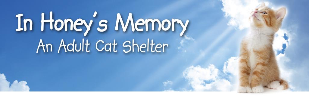 In Honey's Memory Cat Shelter